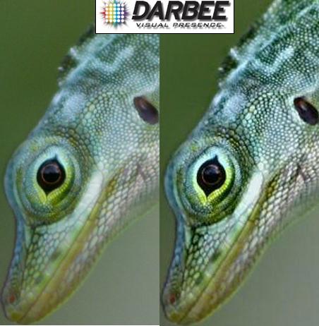 oppo-bdp103d-darbee-virtual-presence