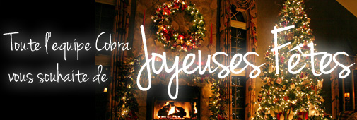 Joyeuses fêtes !!!