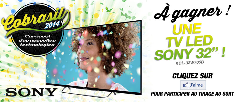 Participez au tirage au sort Cobrasil 2014 !