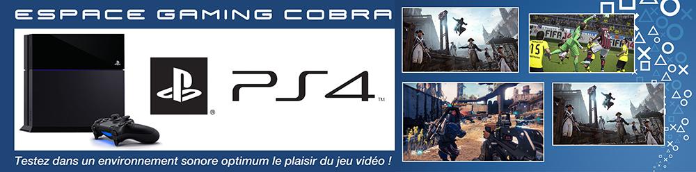 Bannière-gaming-Cobra-2