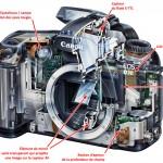Anatomie d'un APN Reflex