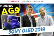 Découvrez les TV OLED Sony AG9 en vidéo !